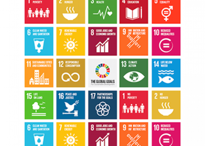 Tim Fleming speaking at the Business and SDGs event - an inside perspective