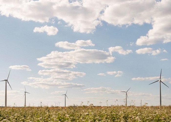 Deutsche Telekom Group is aiming to achieve 100% use of electricity from renewable sources by 2021!