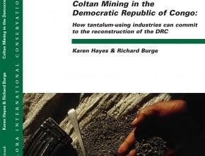 Coltan Mining in the Democratic Republic of Congo: